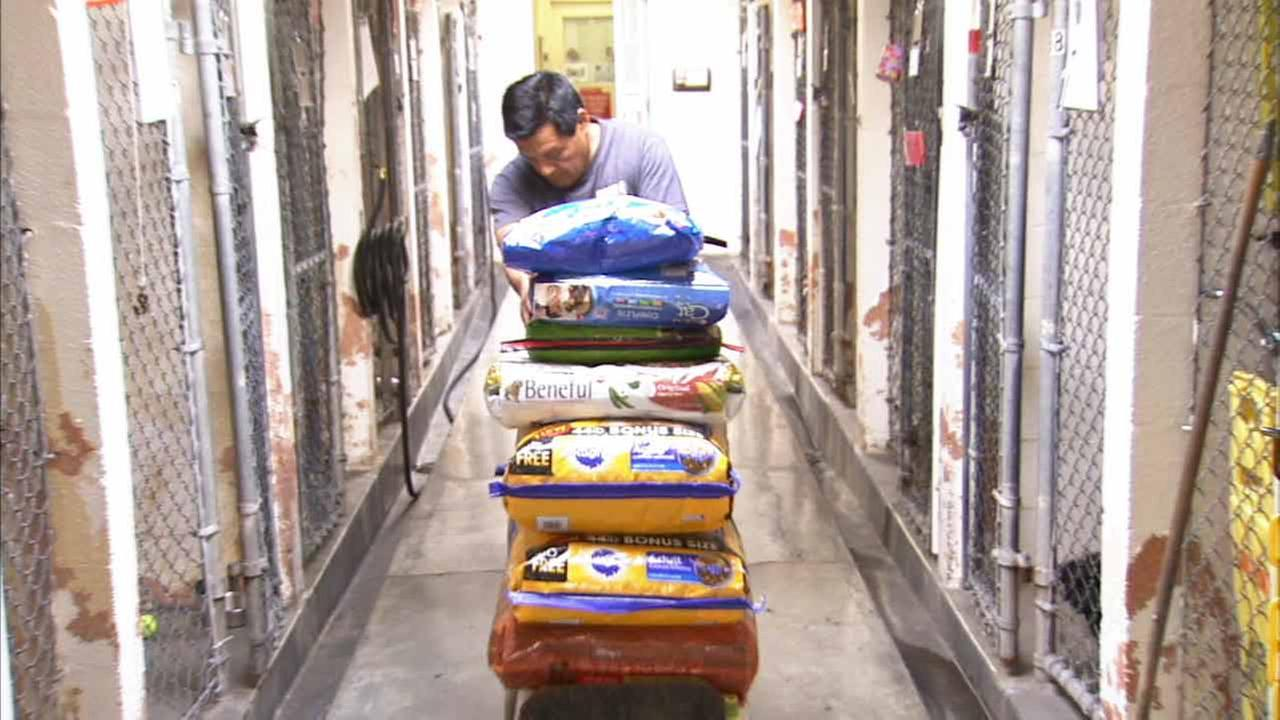 An spcaLA worker wheels bags of food at a shelter in this file photo.