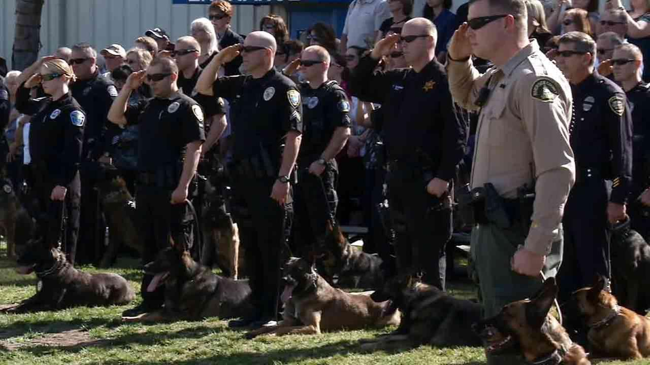 Fellow police officers and their K9 partners gathered to mourn the loss of San Jacinto Police Department K9 Sultan at the War Dog Memorial in Riverside Wednesday, Feb. 11, 2015.