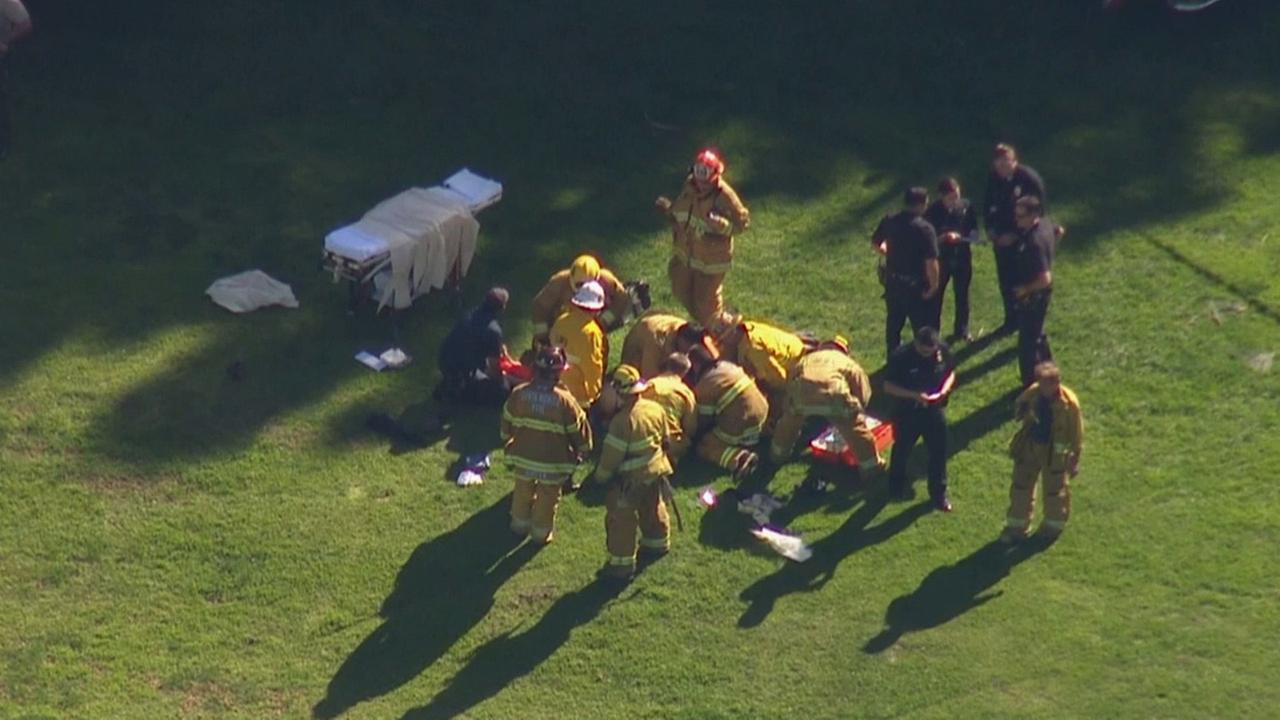 Firefighters aid injured actor Harrison Ford after he crashed a small plane during an emergency landing at a Venice golf course on Thursday, March 5, 2015.