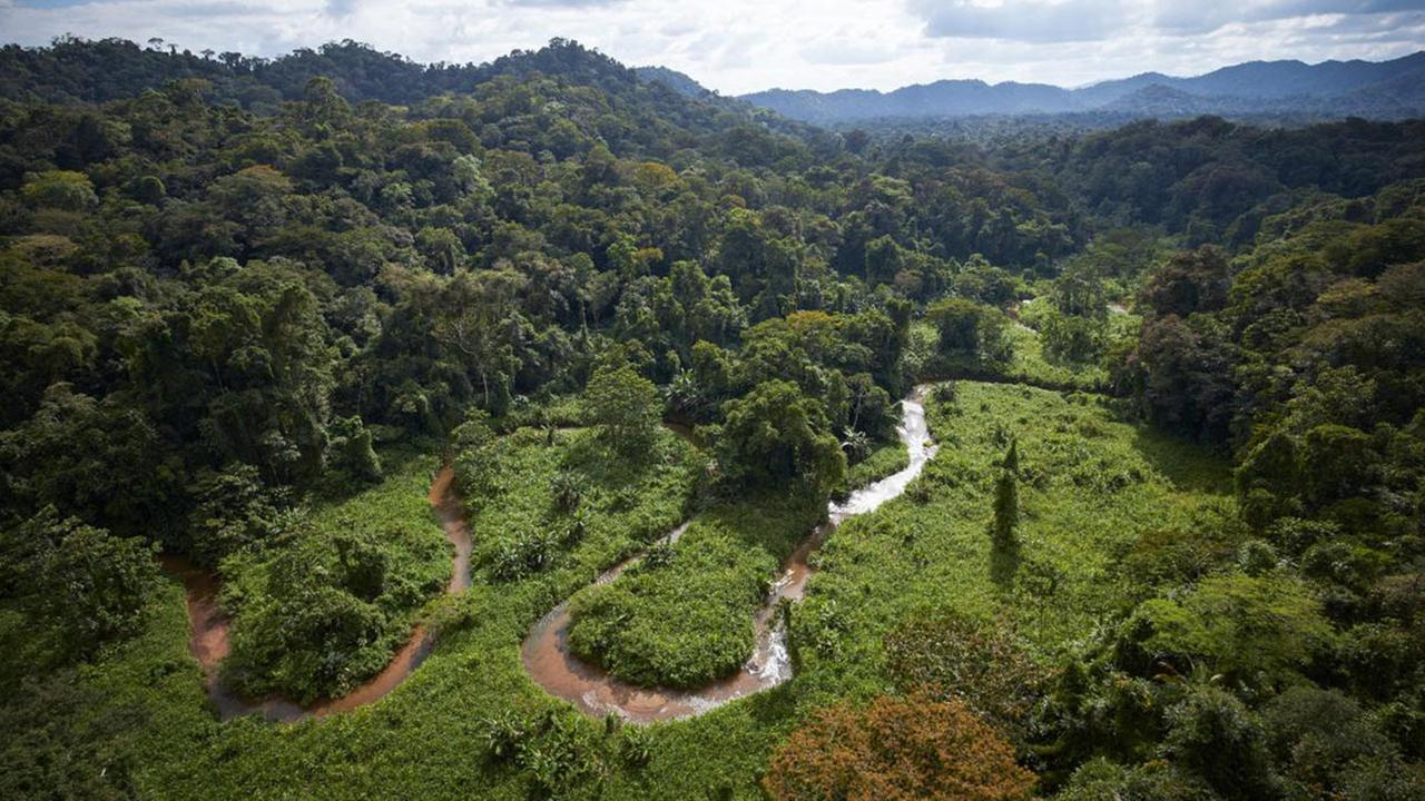 A stream winds through part of an unexplored valley in Mosquitia in eastern Honduras, a region long rumored to contain a legendary White City.