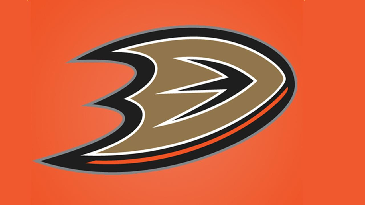 The Anaheim Ducks logo is shown in this undated file photo.