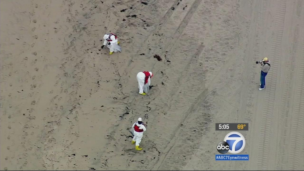 South Bay beaches remain closed after oily substance washed ashore on Wednesday, but no new tar balls were spotted on Thursday.