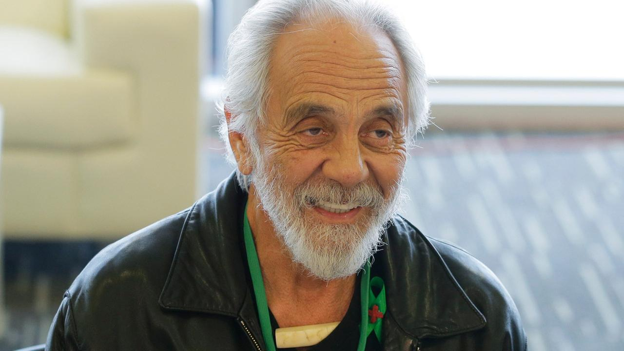 tommy chong up in smoke