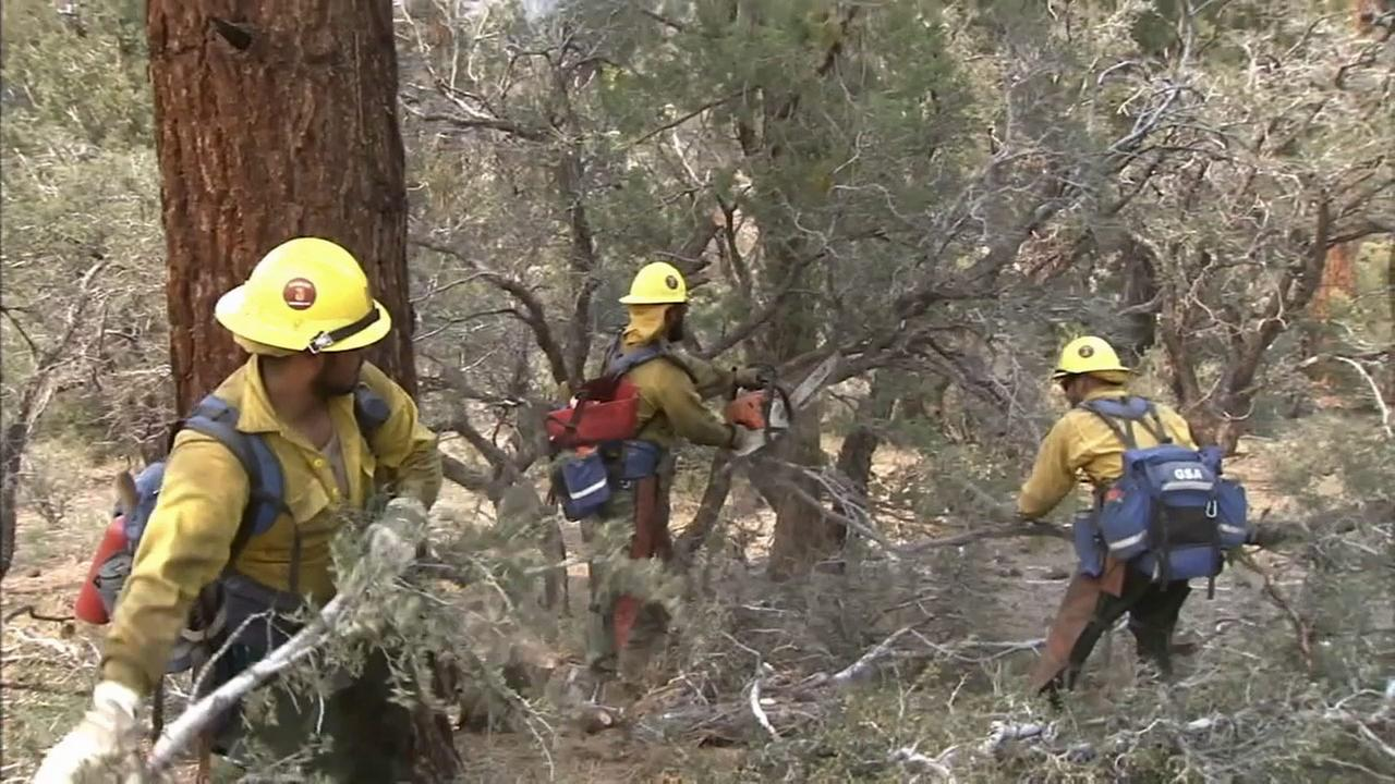 Crews help battle the Lake Fire in the San Bernardino National Forest.