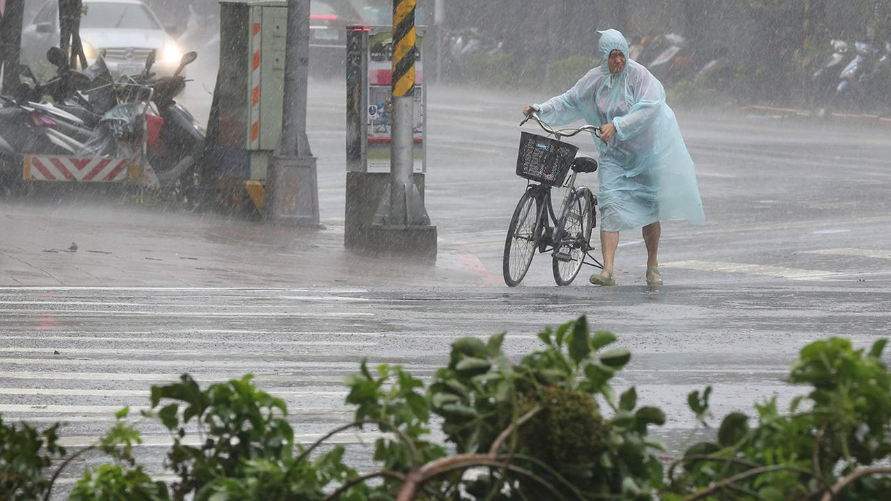 Behind fallen trees, a man braves the strong winds from Typhoon Soudelor with his bicycle in Taipei, Taiwan, Saturday, Aug. 8, 2015.
