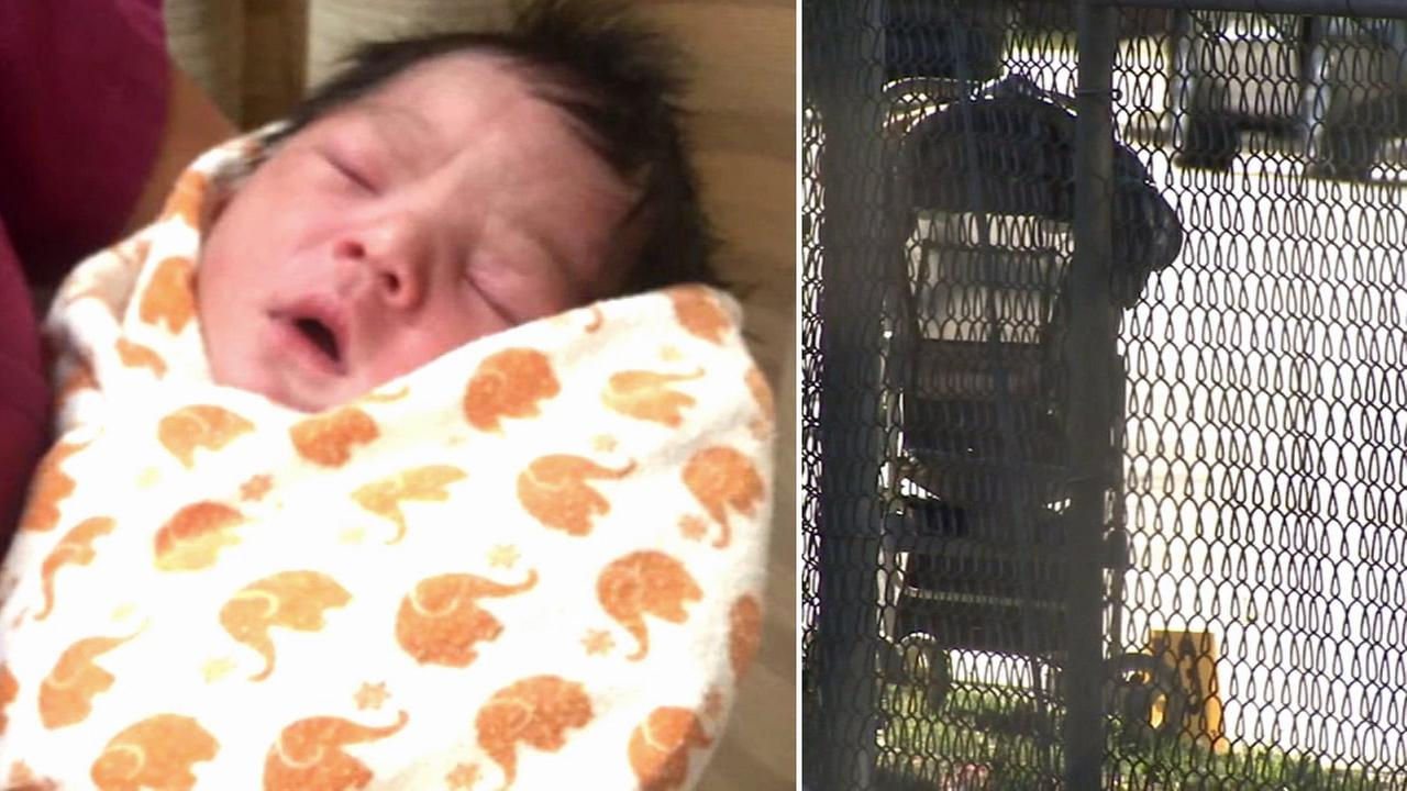 A newborn baby and the stroller he was found abandoned in are shown in images from Tuesday, Aug. 4, 2105.