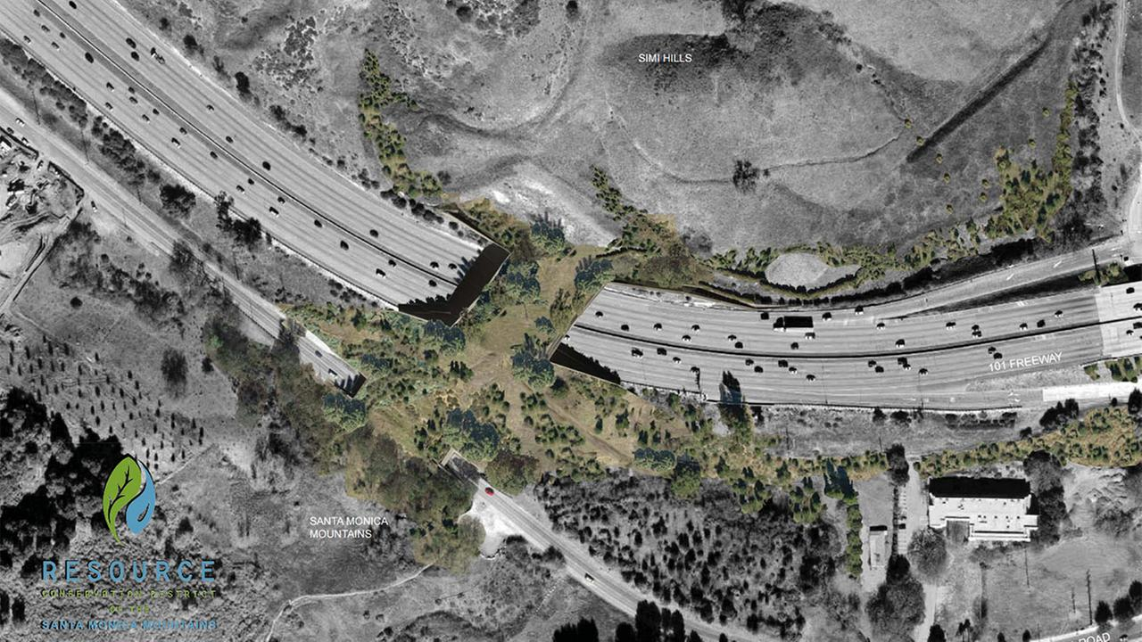 This rendering shows the proposed wildlife bridge that would connect the Santa Monica Mountains with the Simi Hills and Santa Susana Mountains.