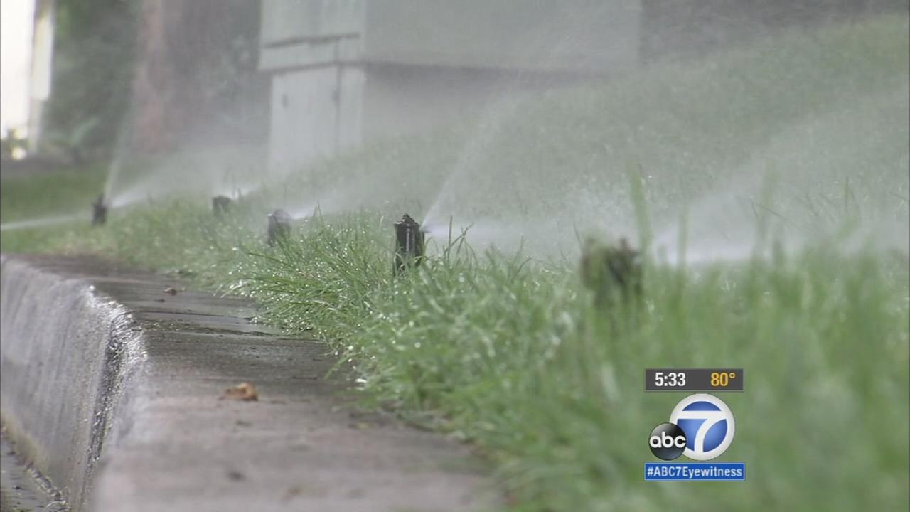 The Department of Water and Power says a Bel-Air resident is the top water user in the city of Los Angeles. The L.A. City Council is outraged over such water hogs and calling on DWP to crack the whip.