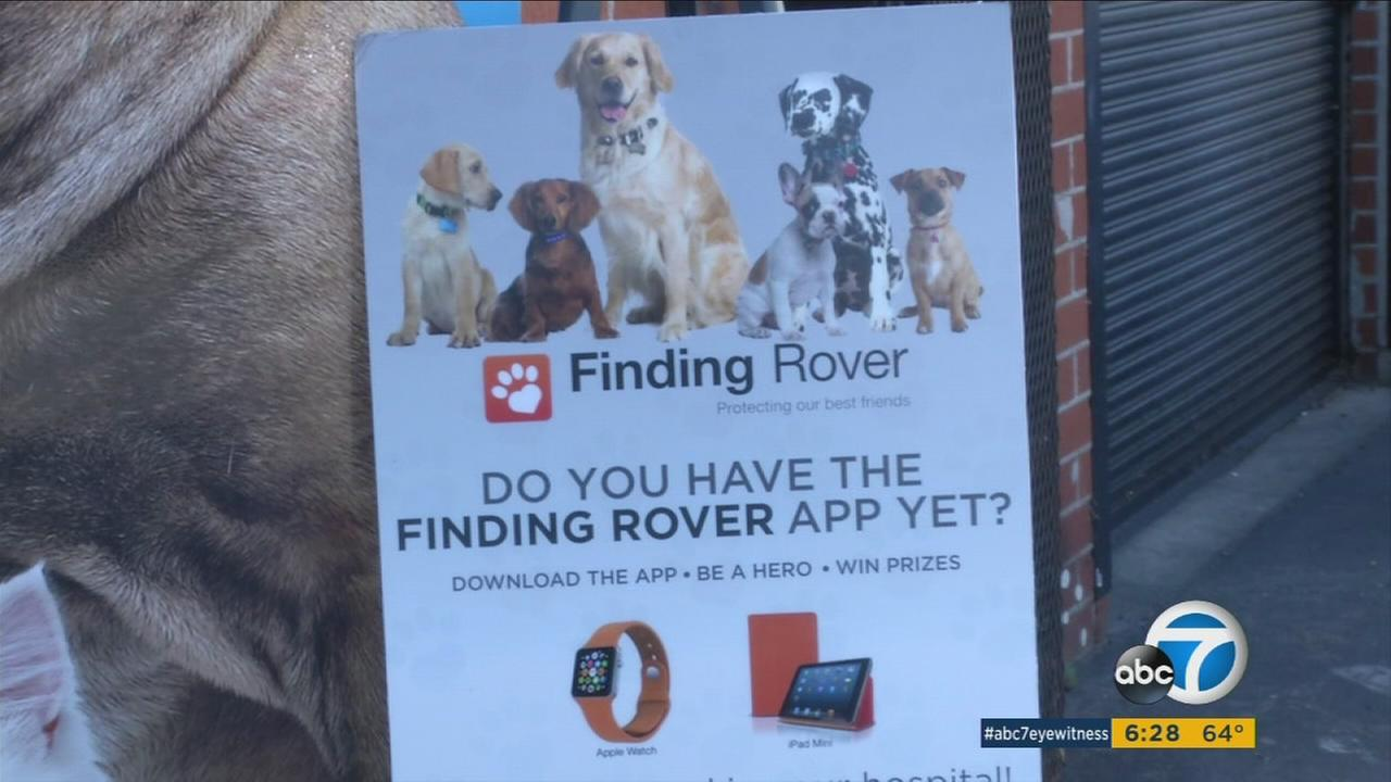 An advertisement for the Finding Rover app is shown in an undated photo.