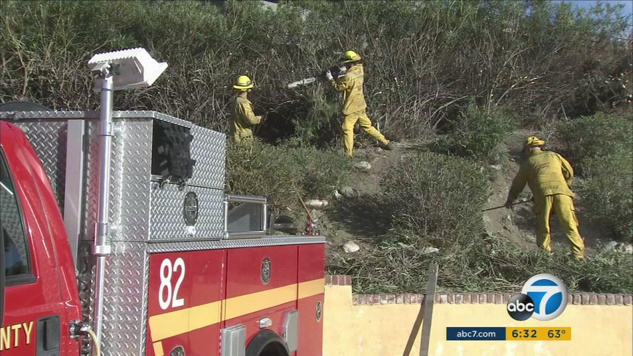 Firefighters work to clear dry brush amid strong, windy conditions in the Southland.