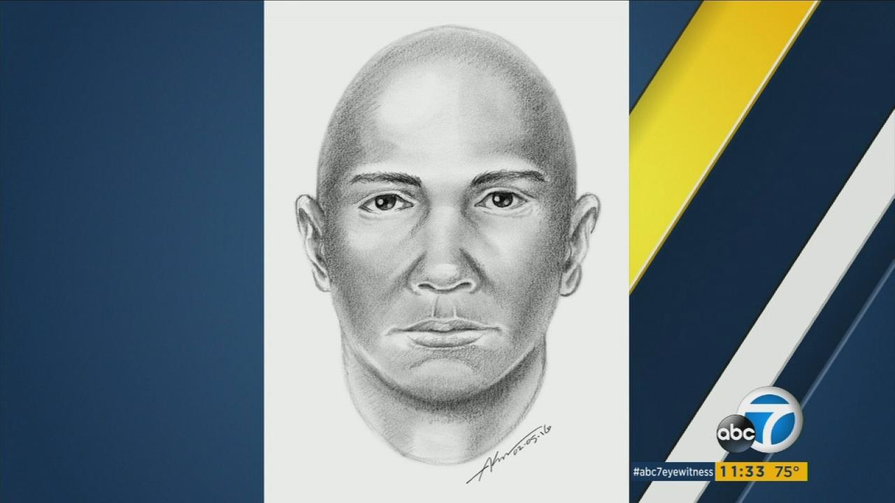 A sketch of a suspect Los Angeles police said dragged and attempted to sexually assault an elderly woman in Northridge on Feb. 2, 2016.