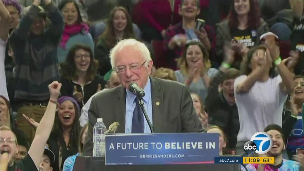 A bird made a surprise visit on the podium of Bernie Sanders as he spoke at a rally in Portland, sending the Internet into a frenzy.