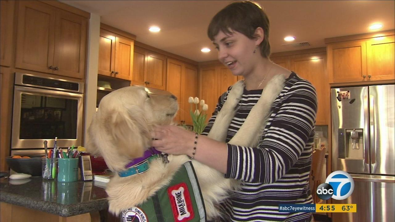 One special, furry family member in the Guske household helps out in a very important way - he is four-year-old, Smith, a golden retriever who can detect seizures.