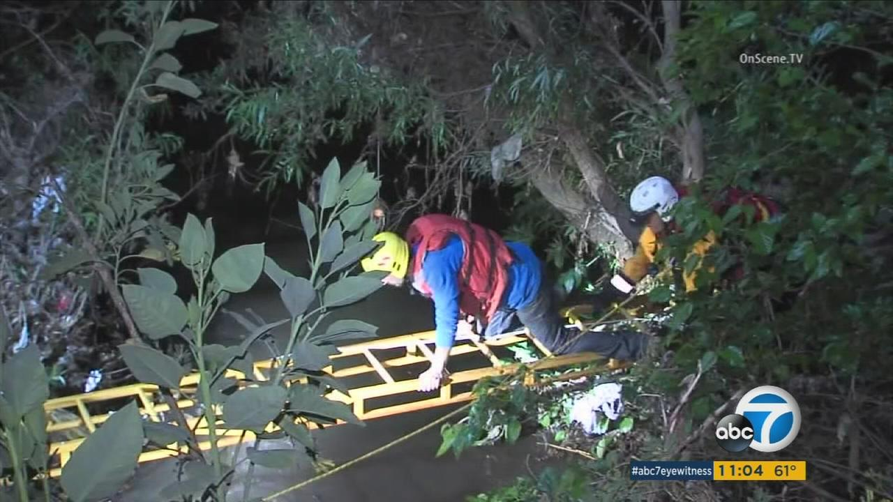 A man trapped in vegetation in the Los Angeles River was rescued by firefighters on Monday, April 11, 2016.