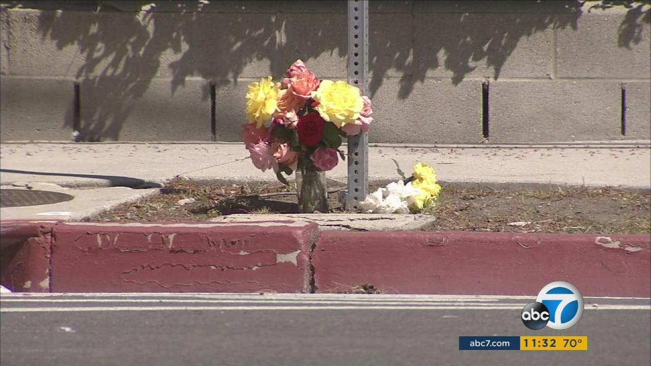 Flowers mark an intersection near a crosswalk where a mother and daughter died while walking their dog in West Hills on Monday, April 11, 2016.