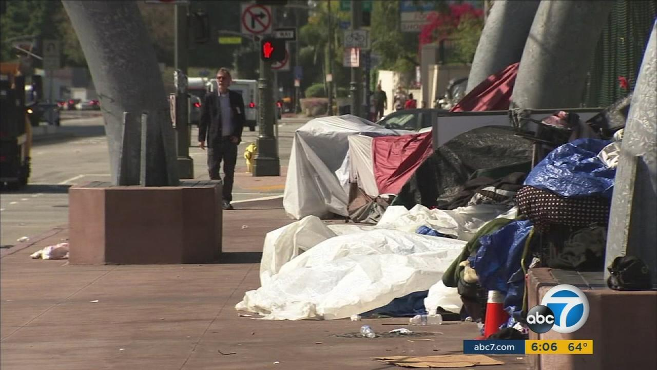 The results of 2016 Greater Los Angeles homeless count showed homelessness grew 5.7 percent in Los Angeles County and 35 percent in the San Fernando Valley from 2015 to 2016.