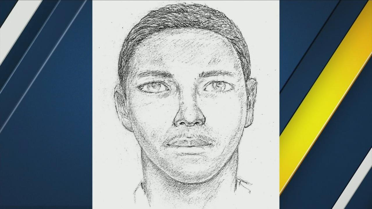 Santa Ana police say the man in this sketch is posing as a detective to lure victims into his car, drive them to an isolated area and commit a violent sexual assault.