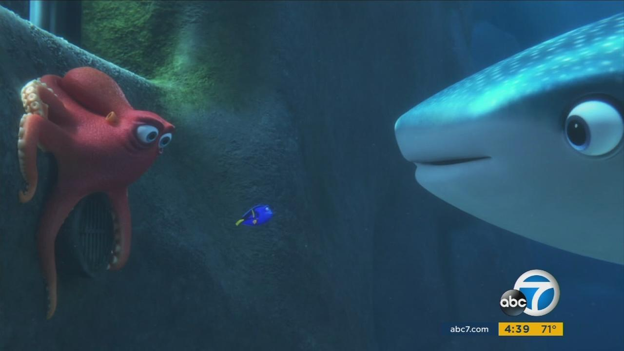 Ed ONeill voices Hank the octopus in the animated sequel Finding Dory, with Ellen DeGeneres in the lead role and Kaitlin Olson as Destiny the whale shark.