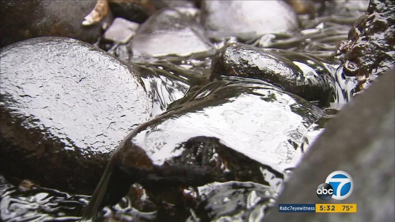 About 29,000 gallons of crude oil spilled into a ravine in Ventura County early Thursday, but officials were able to contain the flow before it ran into the ocean.