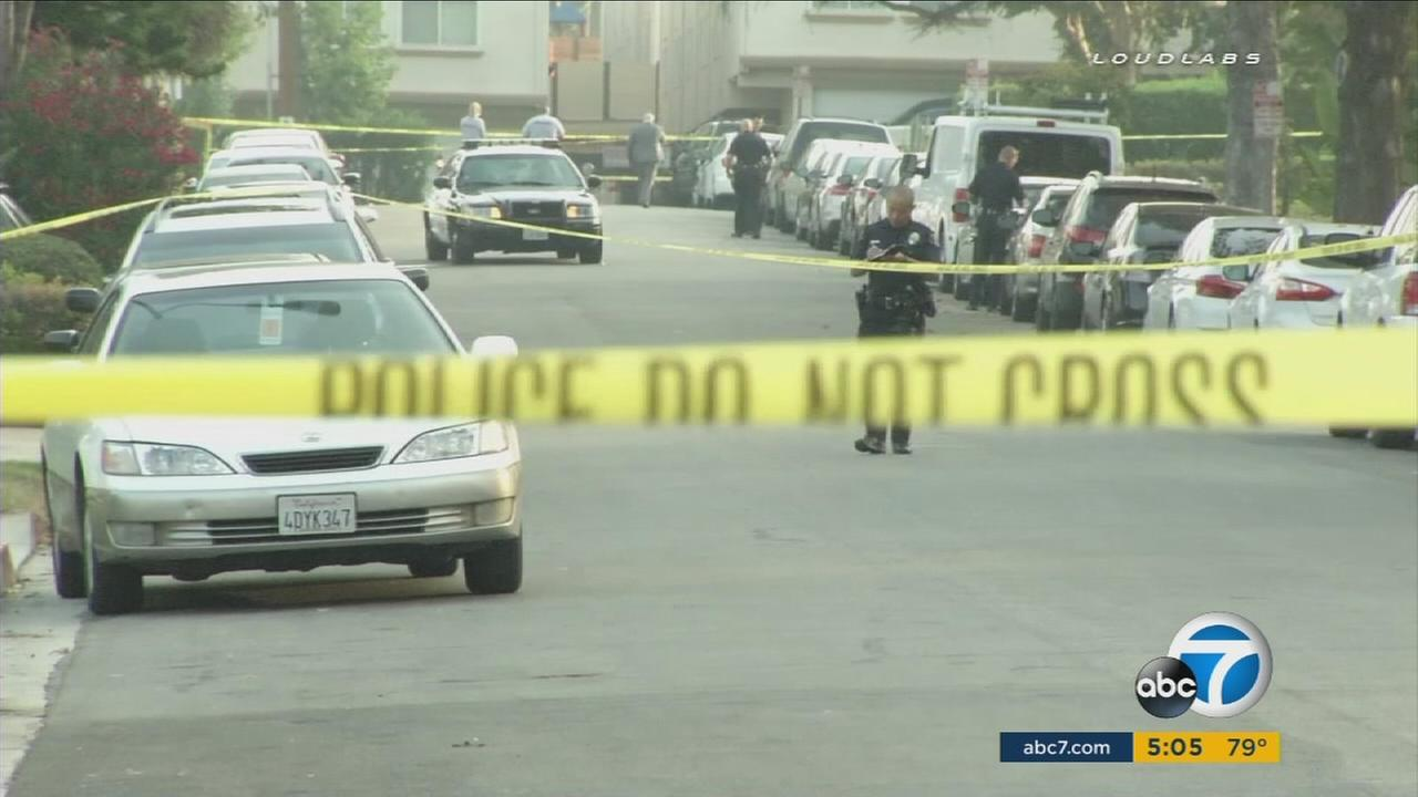 A Florida man was found shot to death in the front yard of a home in Glendale early Saturday morning.
