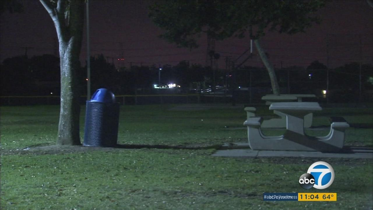 A 9-year-old girl was seriously injured by a firework explosion at a park in Compton on Saturday, July 2, 2106.