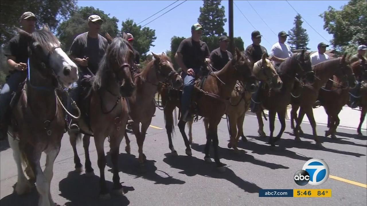 The Orange County Regional Mounted Unit trained for several scenarios, including riots and crowd control, on Wednesday, July 20, 2016.