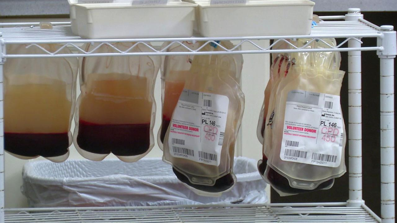 Blood bags donated by dogs at Garden Grove animal blood bank Hemopet are shown in an undated photo.