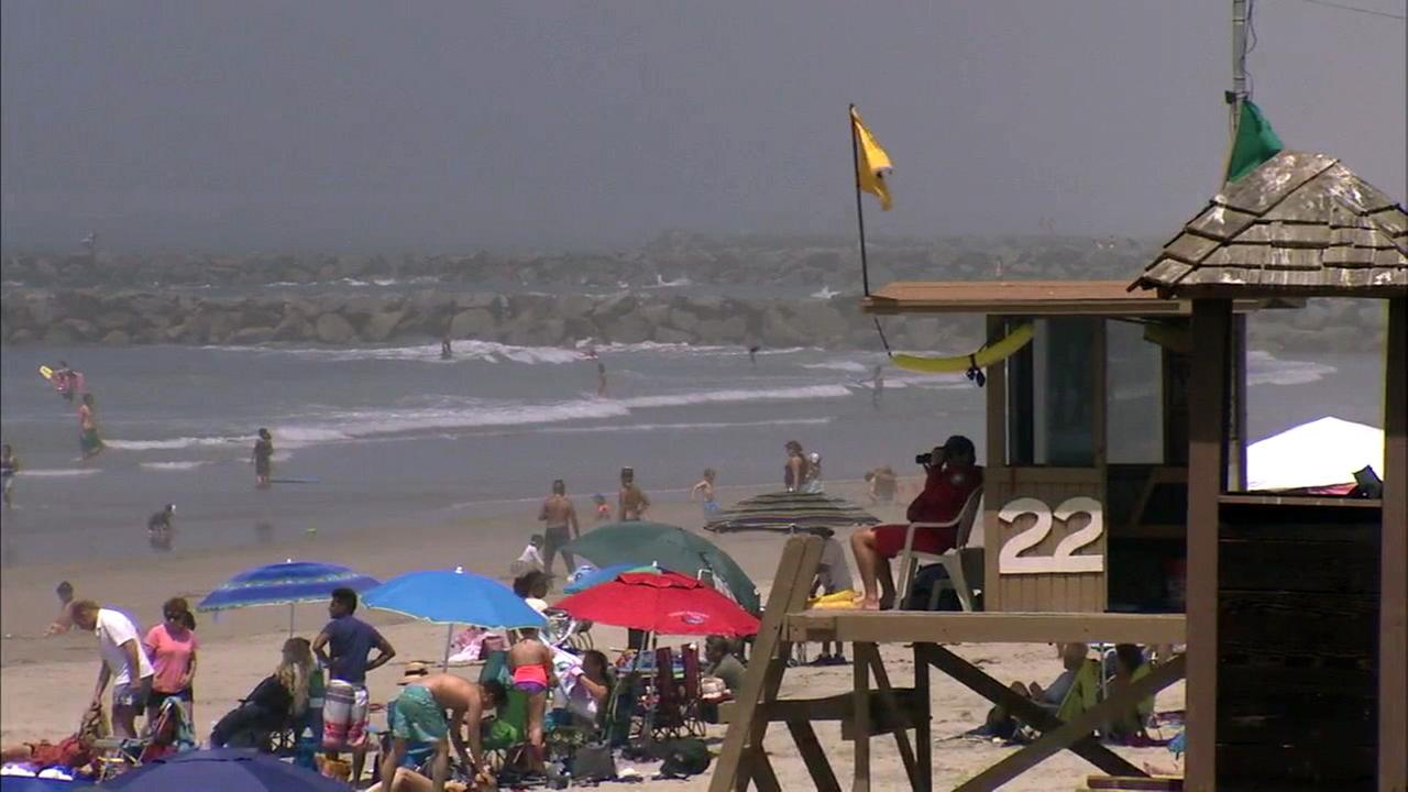 Lifeguards said warmer waters have attracted stingrays closer to the shoreline of Southern California beaches.