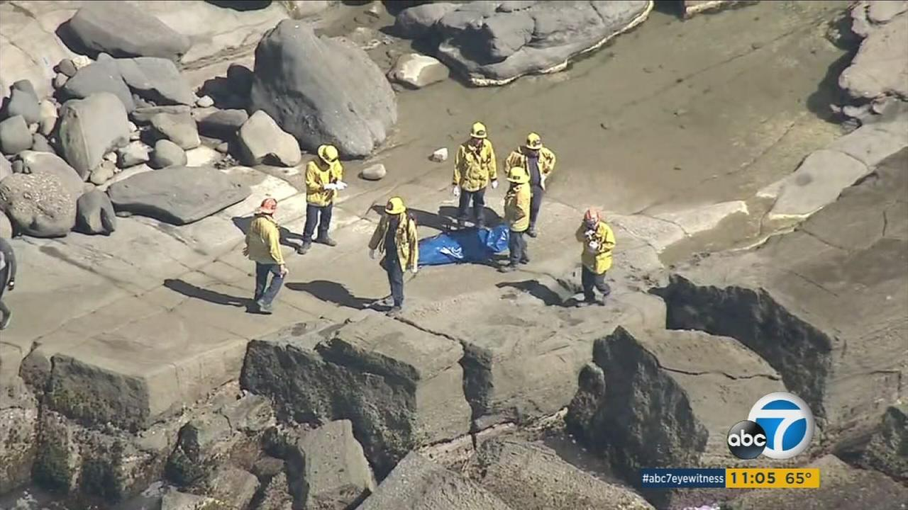 A 21-year-old Nevada woman fell to her death after trying to get a better view of the ocean in San Pedro Friday afternoon.