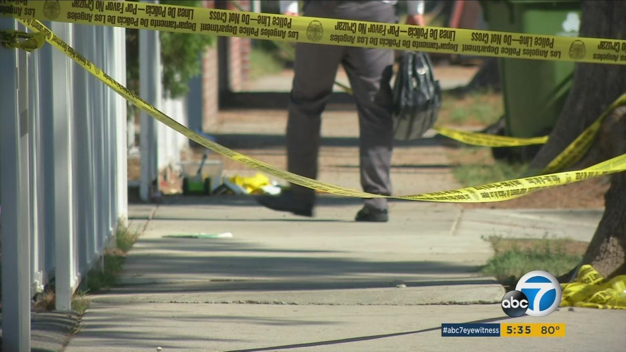 A man was shot and killed early Tuesday morning in the driveway of his Reseda home, authorities said.