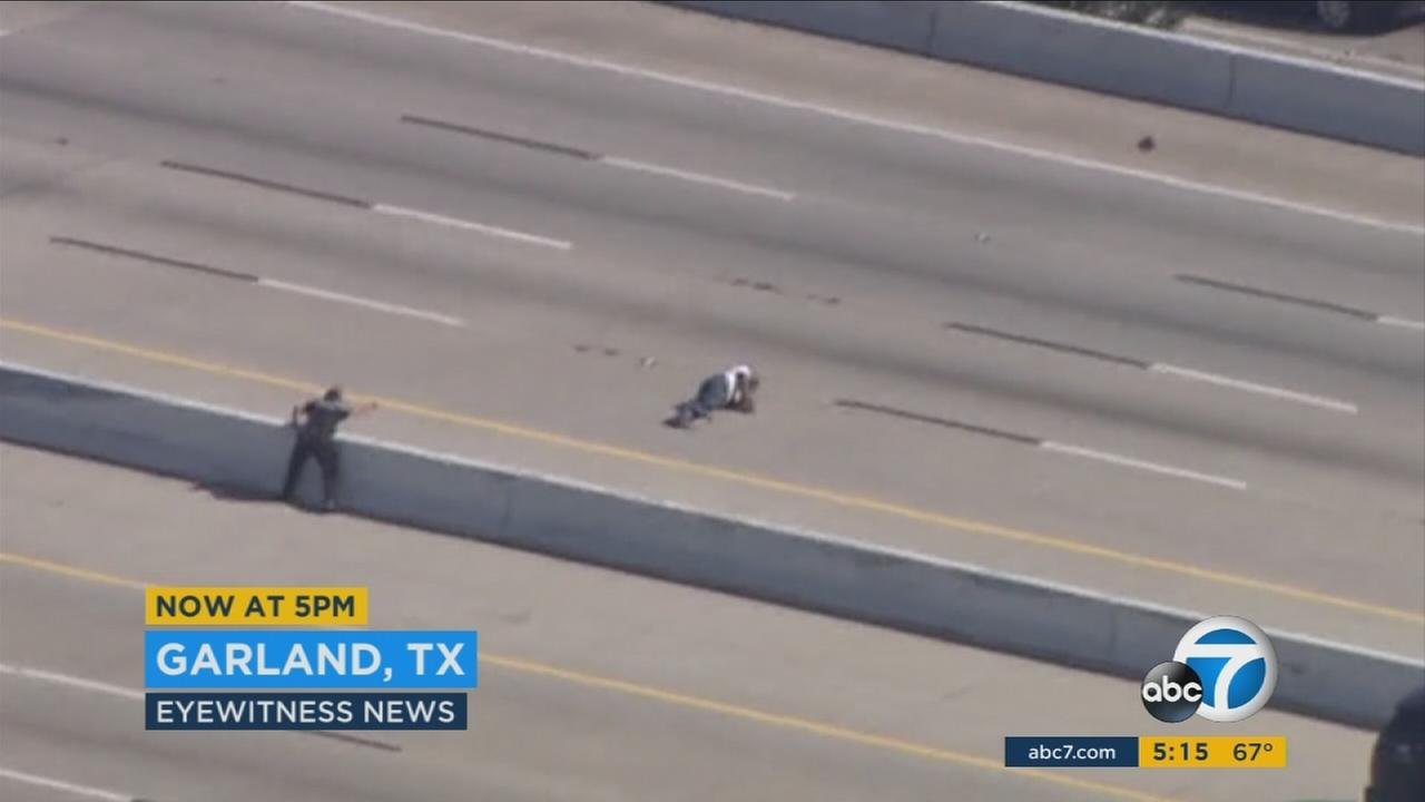 A wild pursuit in Garland, Texas ended with the suspect running onto a busy freeway and being Tased by an officer, falling down in the middle of a lane.