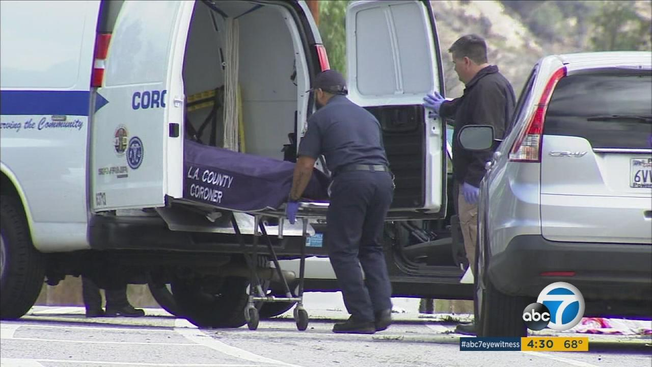 A man in his 40s was attempting to repair his broken-down truck on a street in Sylmar Monday morning when he was struck and killed by a hit-and-run driver, authorities said.