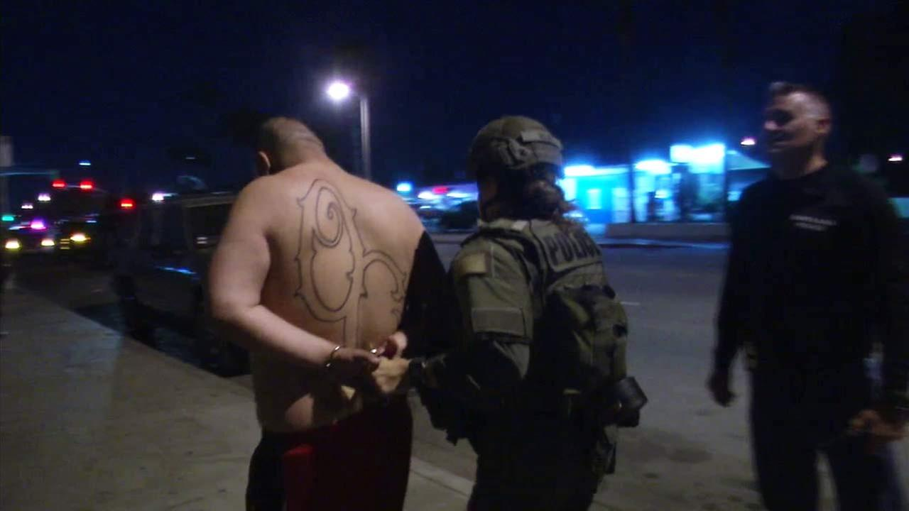 A person is being taken into custody during a gang sweep in Orange County.