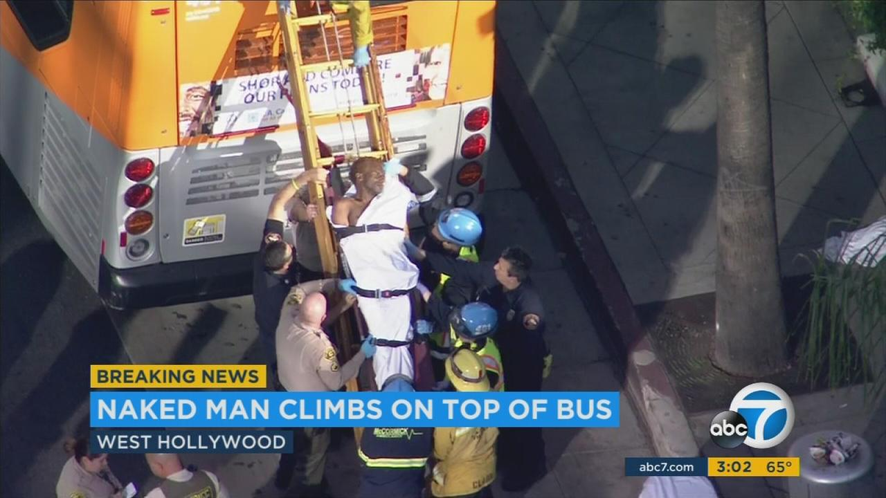 A naked man was strutting and posing on top of a Metro bus in West Hollywood before he was taken into custody and removed on a stretcher.