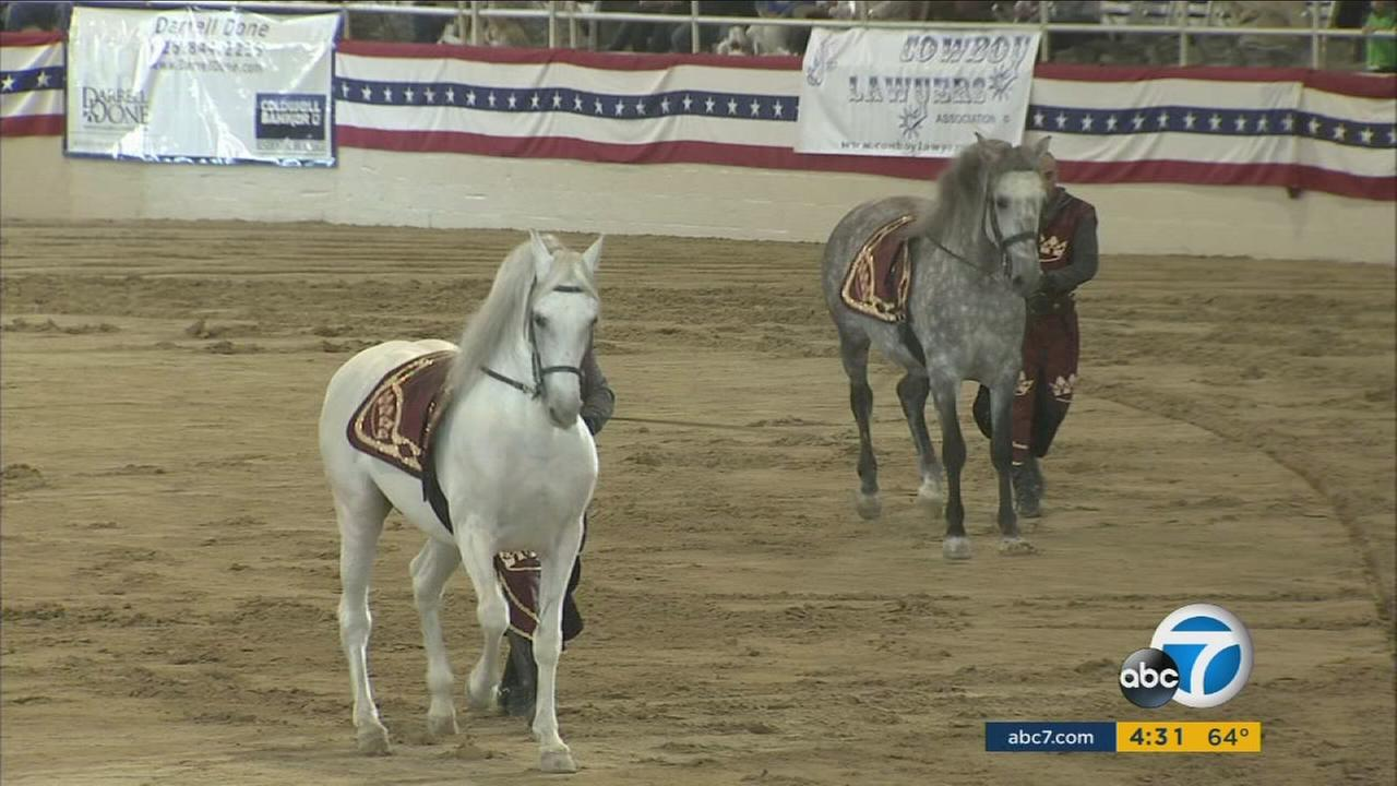 After hundreds of horses became infected with equine herpes at the Los Angeles Equestrian Center, the Pasadena Tournament of Roses canceled the long-running horse show, Equestfest.