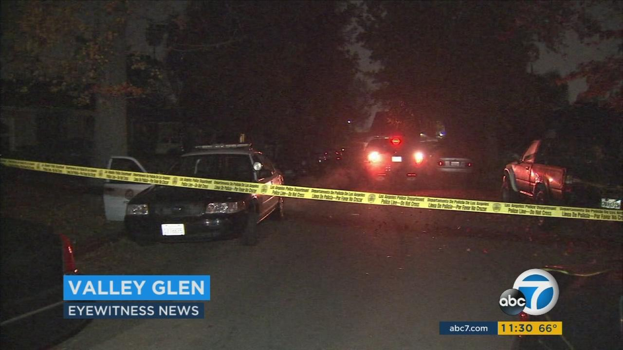 Valley Glen shooting
