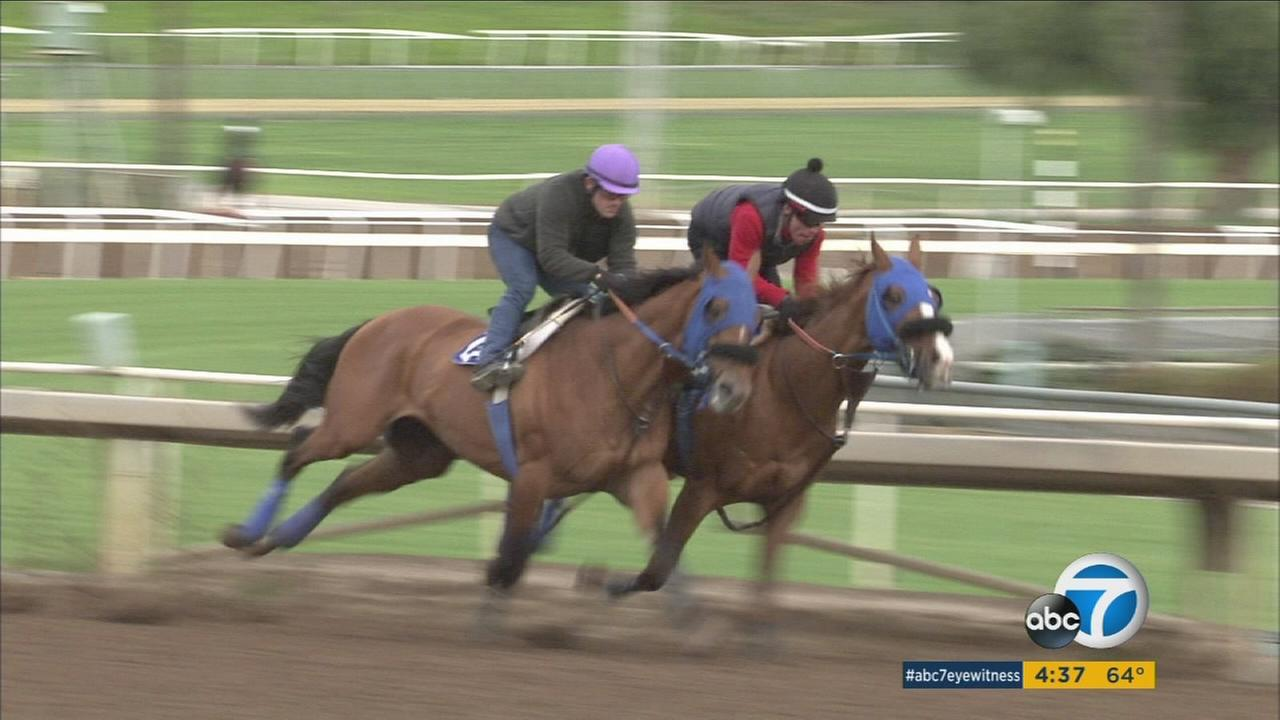 Thousands of horse-racing fans headed to Santa Anita Park the day after Christmas for the winter season kickoff.