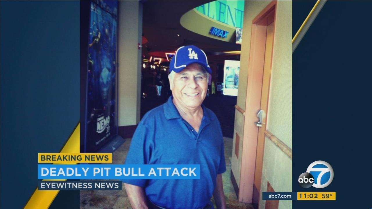 Valentine Herrera, 76, was rushed to the hospital in critical condition after being attacked by two pit bulls in Lincoln Heights on Thursday, Feb. 2.