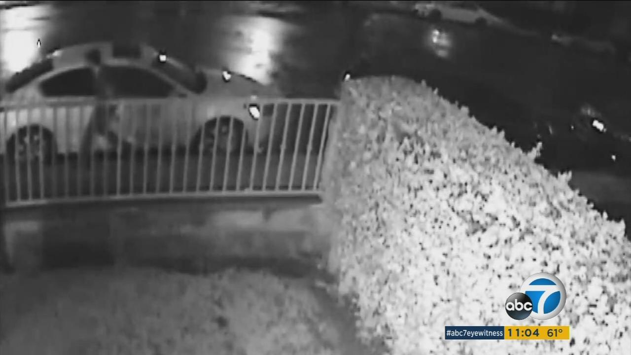 A suspect is shown walking through a Van Nuys neighborhood, slashing tires on dozens of cars.