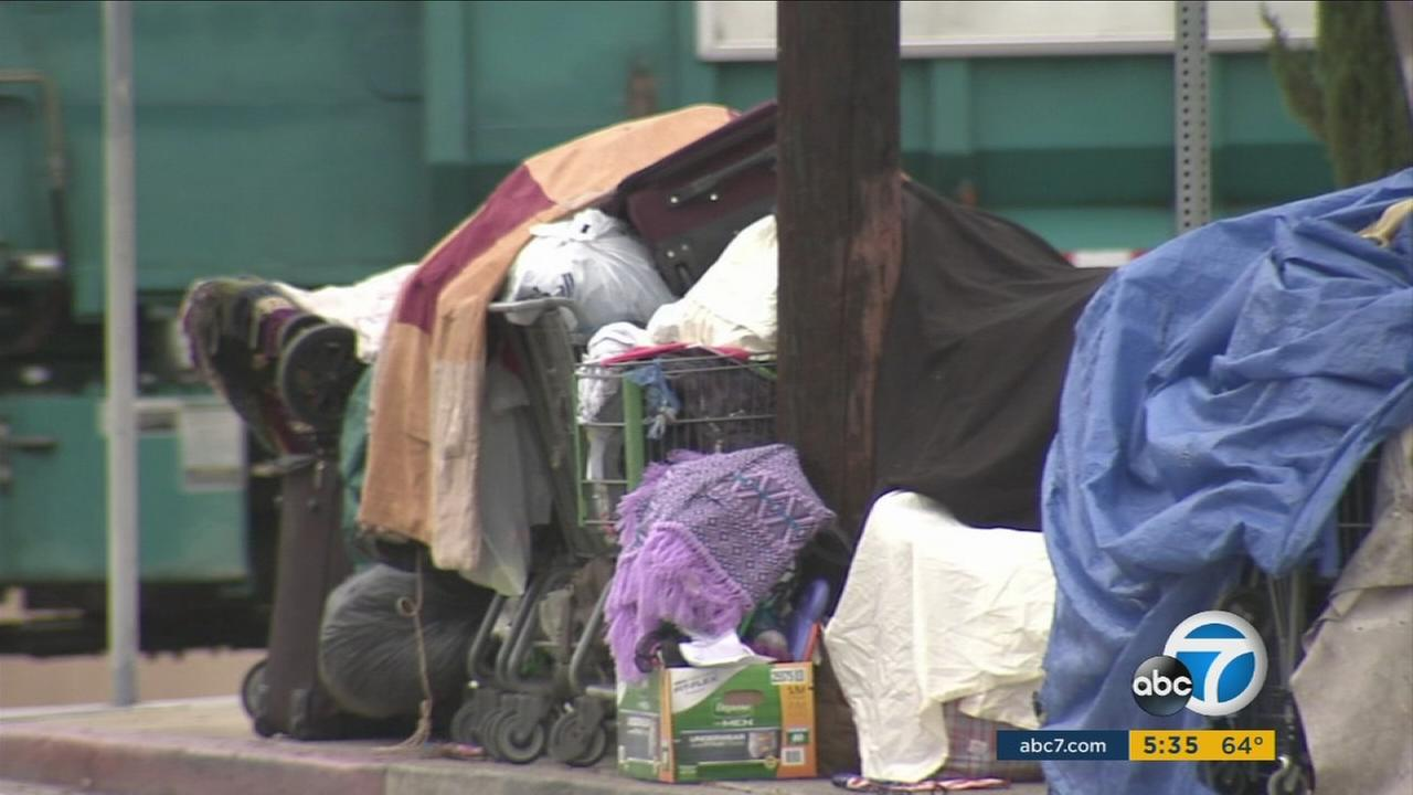 The Los Angeles City Council unanimously approved a pilot program that aims to help the homeless avoid hefty citations in exchange for community service.
