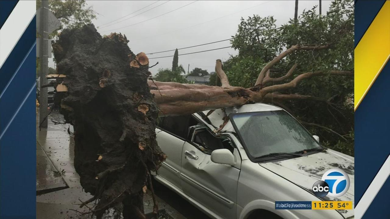 In Orange County, the storm brought down trees onto cars, people and homes.