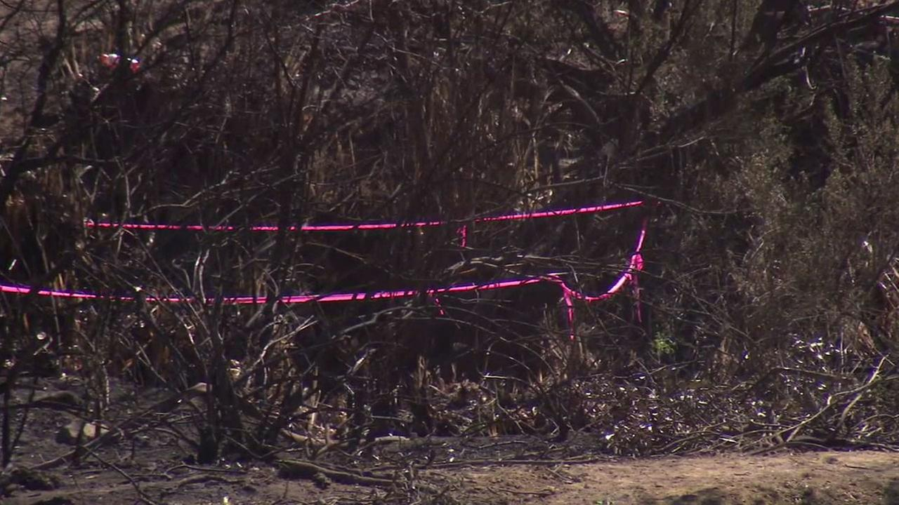 An area marks the spot where possible human remains were found in Sherman Oaks the day after a brush fire on Sunday, March 12, 2017.