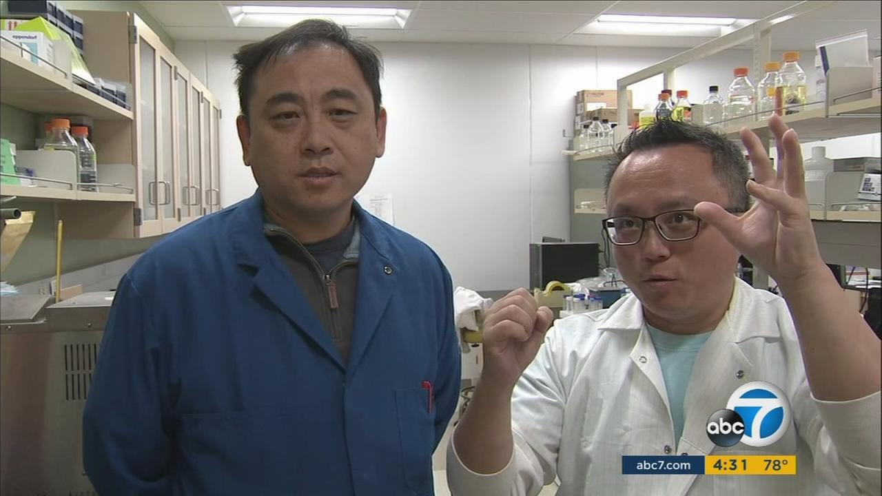 UC Riverside researchers Jikui Song (left) and Rong Hai have made a new discovery about the structure of the Zika virus.