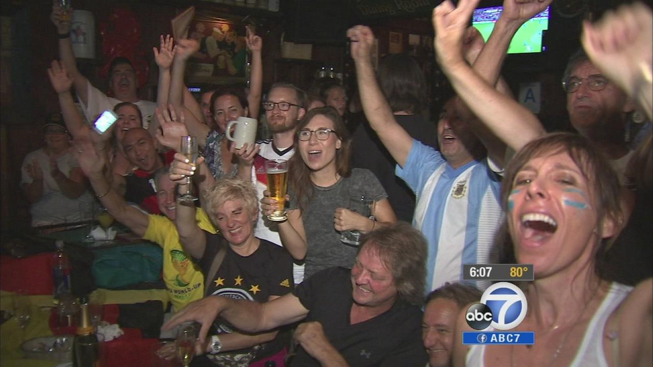 World Cup fans cheer while watching the final game on Sunday, July 13, 2014.