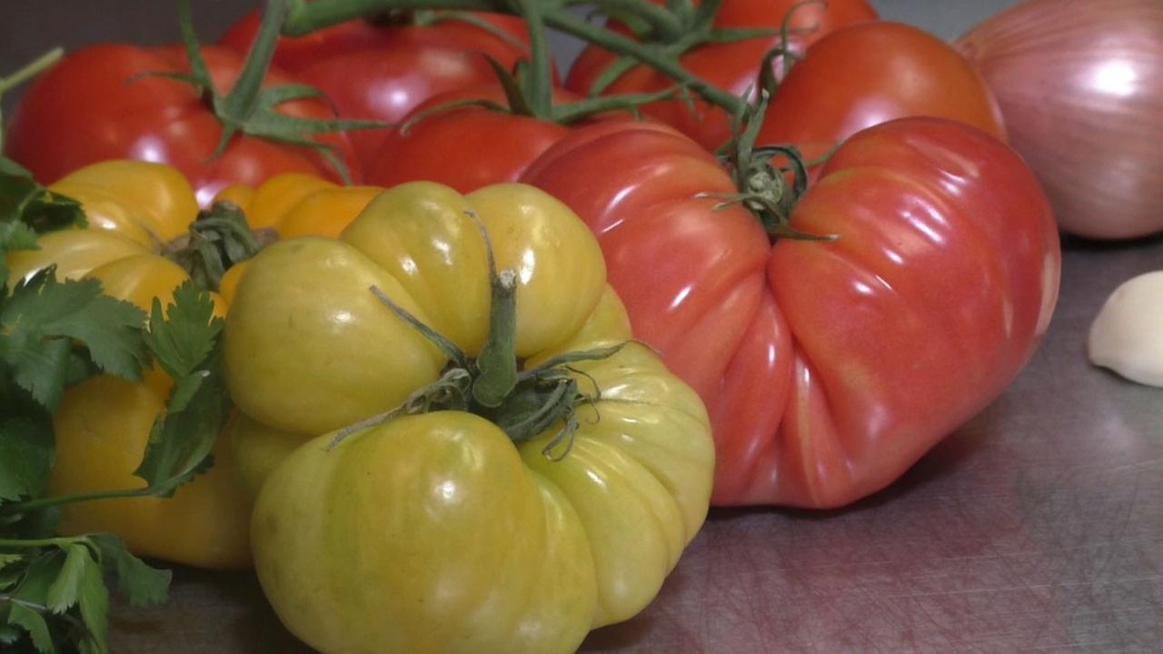 Tomatoes are shown in a photo during a recipe and cooking demonstration.
