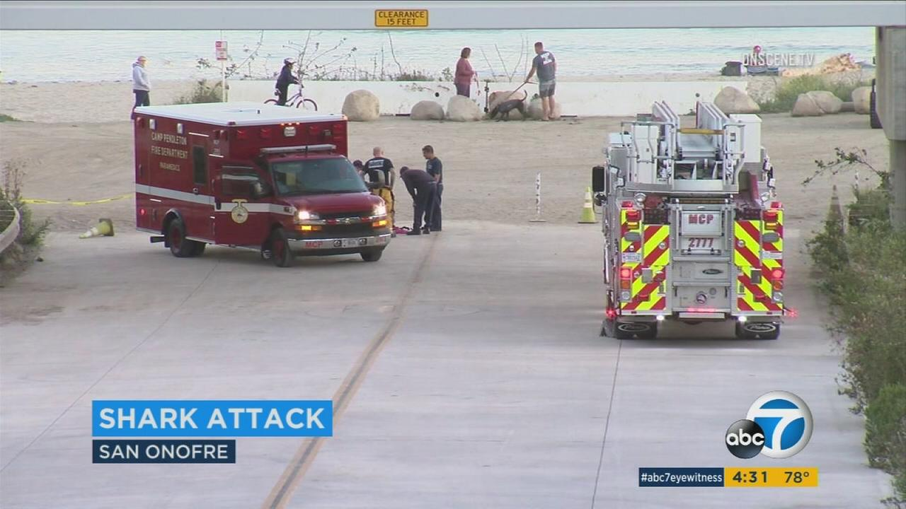 A shark attacked a woman in the ocean near San Onofre beach, tearing away part of her upper thigh, authorities and witnesses said Sunday.