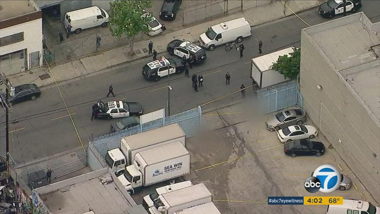 Los Angeles police shot and killed two pit bulls and wounded another after they say the dogs attacked a man who was walking his dog in downtown LA.