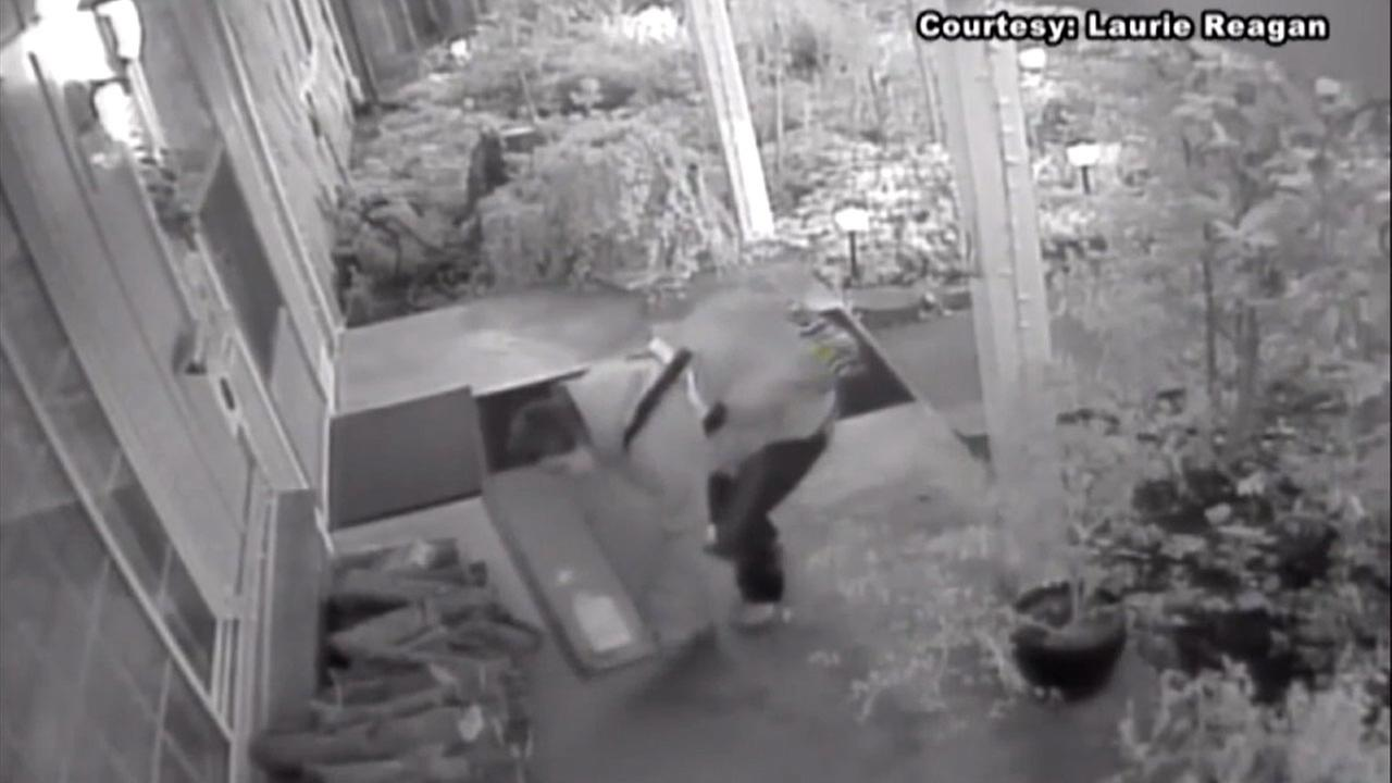 A package thief is shown in surveillance video.