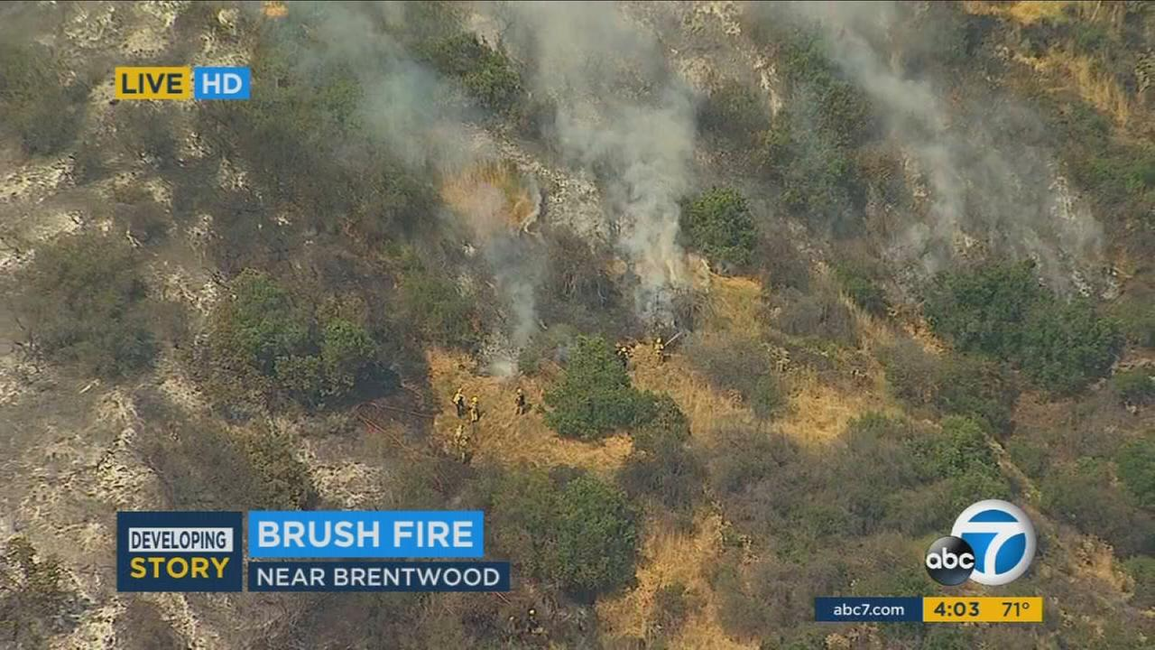 More than 150 firefighters were battling a major emergency brush fire that charred at least 30 acres in the Brentwood area Sunday afternoon, officials said.