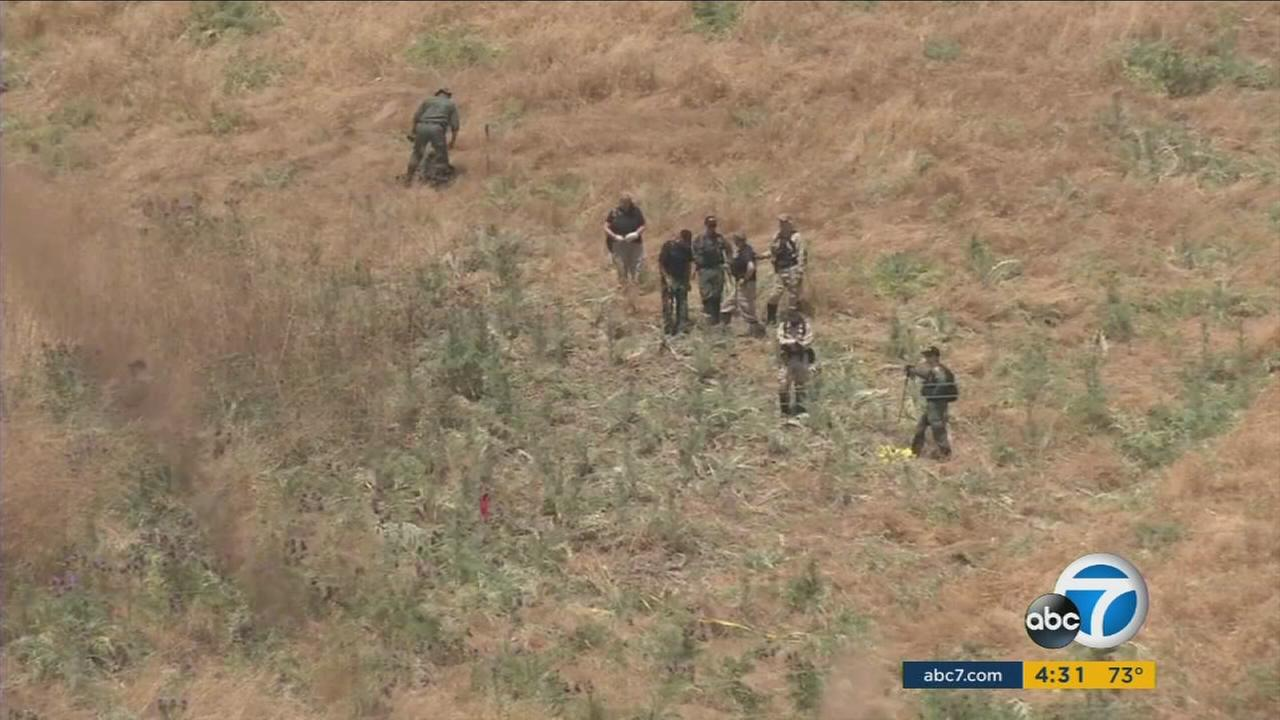 A human skull and other pieces of bone were found in a rural area in San Clemente, Orange County sheriffs officials said.